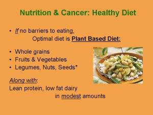 optimal-cancer-diet